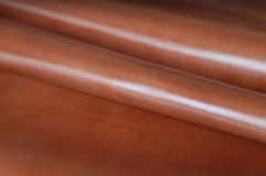 skóra Obrazy Stock