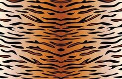 skóra tygrys ilustracji