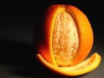 skórka pomarańczowa Obraz Stock