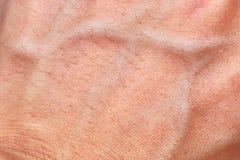 Skóry tekstura z naczyniem krwionośnym i włosy Obrazy Stock