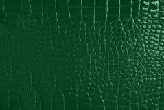 skóry zielona tekstura Obraz Stock
