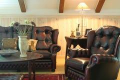 skórzana sofa Zdjęcie Stock