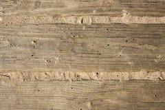 Sköld med ett stort antal parallell träjournaltextur Trärullgardiner Royaltyfri Bild