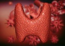 Sköldkörtel som förorenas av virus och bakterier Förpliktelse av endokrin körtelsystemet vid parasit stock illustrationer