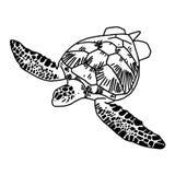 Sköldpadda för handattraktionhav, vektor Royaltyfria Foton