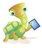 sköldpadda för holdingPCtablet Arkivfoto