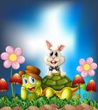 Sköldpadda och hare stock illustrationer
