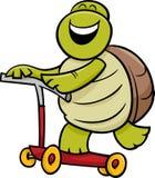 Sköldpadda på sparkcykeltecknad filmillustration Fotografering för Bildbyråer
