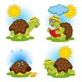 Sköldpadda som läser en bok och skinn från regnet stock illustrationer