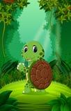 Sköldpadda utom fara och grön skog vektor illustrationer