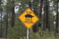 Sköldpaddakorsningen tecken, Custer State parkerar royaltyfri bild