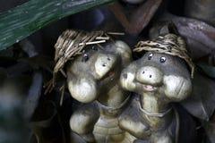 Sköldpaddaparbakgrund royaltyfri fotografi