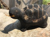 Sköldpaddastaty Fotografering för Bildbyråer