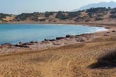 Sköldpaddastrand Alagadi i det medelhavs- Fotografering för Bildbyråer