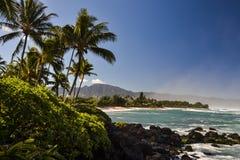 Sköldpaddastrand nära Haleiwa - norr kust Oahu, Hawaii Arkivfoton