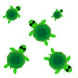 Sköldpaddor på vit bakgrund Stock Illustrationer