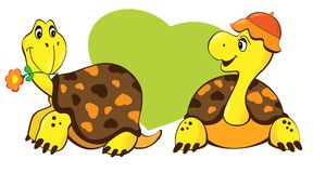 sköldpaddor två Arkivfoton
