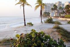 Sköljas upp på stranden vågor Arkivfoto