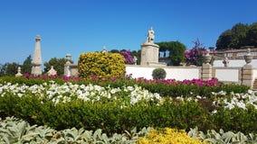 Skönhet i Portugal Arkivfoton