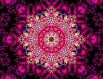 Skönhet i rosa färger Fotografering för Bildbyråer
