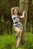 Skönhet i skogen royaltyfri foto