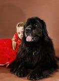 Skönhet och fäflickan med den stora svarta vatten-hunden Arkivfoton