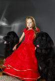 Skönhet och fäflickan med den stora svarta vatten-hunden Fotografering för Bildbyråer