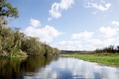 Skönhet och fred på Stet Johns River i centrala Florida Royaltyfri Bild