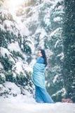 Skönhet som den unga kvinnan som utomhus går i vinter, parkerar under granträdet, täckte snö Härligt posera för modellflicka arkivbilder