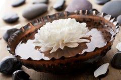 skönhetbrunnsort Royaltyfria Bilder