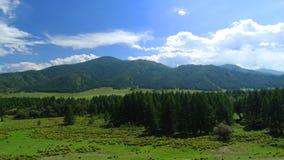 _ Skönhetcentral Altai Royaltyfri Bild