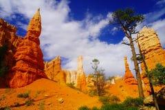 Skönheten av Bryce Canyon Arkivfoton