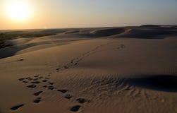 Skönheten av den Arabien öknen som solen börjar att ställa in, Dammam, det östliga landskapet, kungarike av Saudiarabien Royaltyfri Fotografi