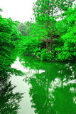 Skönheten av naturen från den västra sjön Arkivbilder