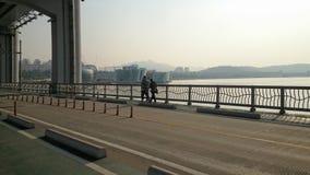 Skönheten av Seoul 10 Arkivbild