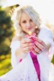 skönhetgravid kvinna fotografering för bildbyråer