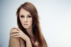 skönhetgrey Fotografering för Bildbyråer