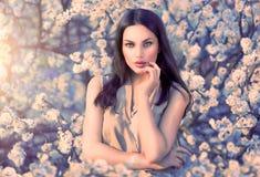 Skönhetkvinnastående i blommande träd Fotografering för Bildbyråer