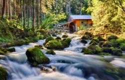 Skönhetlandskap med floden och skogen i Österrike, Golling