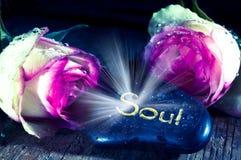 skönhetnegro spiritual Royaltyfri Fotografi