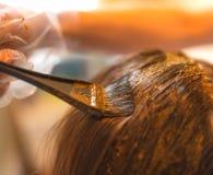 Skönhetrutin av färgläggninghår med naturlig henna Royaltyfria Foton