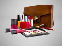 Skönhetsmedel för flicka med den främre sikten 3d för handväskan framför på grå färgbac stock illustrationer