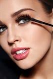 Skönhetsmedel Härlig kvinna med perfekt makeup som applicerar mascara royaltyfria bilder
