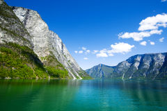 skönhetsognefjord Royaltyfria Foton