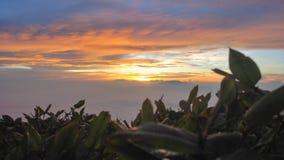 Skönhetsoluppgång från det Lawu berget Indonesien Royaltyfri Fotografi