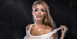 Skönhetstående av den blonda sexiga damen Royaltyfria Foton