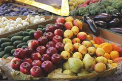 Skördäpplen, rädisor, kål och aubergine royaltyfri fotografi
