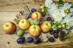 Skörd av äpplen, katrinplommoner, fikonträd och valnötter med vita dahlior Royaltyfri Fotografi