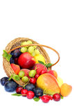 Skörd av frukter på vit bakgrund Royaltyfri Fotografi