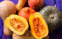 Skörd av mognad guling, apelsinen, gröna pumkins mycket och snittet royaltyfri fotografi